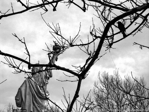 "Behind the liberty © Anastasiy.Safari. 23x17"". Photocopy."